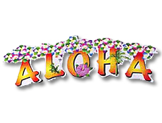 Aloha Party Supplies