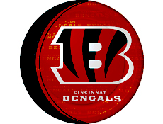 Cincinnati Bengals Party Supplies