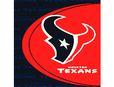Houston Texans Party Supplies